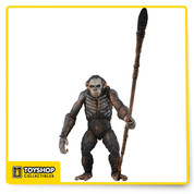 "These detailed action figures come straight from Dawn of the Planet of the Apes, the highly anticipated sequel to 2011's Rise of the Planet of the Apes! A growing nation of genetically evolved apes led by Caesar is threatened by a band of human survivors of the devastating virus unleashed a decade earlier. They reach a fragile peace, but it proves short-lived, as both sides are brought to the brink of a war that will determine who will emerge as Earth's dominant species. The figures stand approximately 6"" tall and come with interchangeable hands and character-specific accessories."