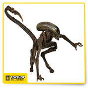"The third series of our #1 selling Alien action figures brings all new characters spanning the first three Alien films to the collection! The long-awaited Dog Alien is from 1992's Alien 3. Figures stand 7"" - 9"" tall and are fully articulated"