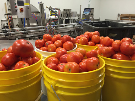 In 2016 we bottled over 40,000 lbs of locally grown tomatoes!