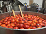 Each of our kettles holds 600 pounds of uncooked tomatoes, we steam these, drain off the water, then pack it into quart size glass mason jars and get them back to the farms. Our local farms sell their tomatoes (in canned form) throughout the winter and spring, and we sell our own version of tomato puree to stores in the Northeast and Mid-Atlantic.