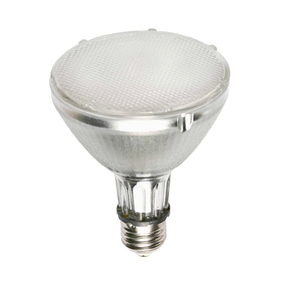 70W Warm White PAR 30 Flood Ceramic Metal Halide Lamp