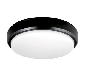Vandal Resistant Wall or Ceiling Light - 240V 15W 1250lm 5000K IP65 21cm Black