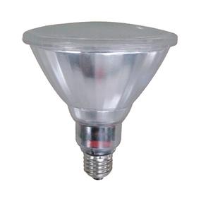 20W Cool White PAR38 Lamp Edison Screw