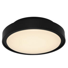 Marine Grade Wall or Ceiling Light - 240V 3000K 1000lm 16W 295mm Black