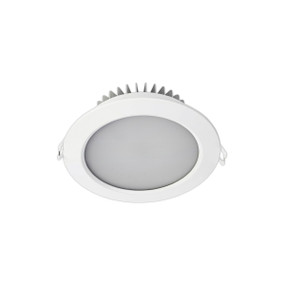 LED Downlight - Dimmable 15W 1300lm IP44 Tri Colour 160mm White Shop Light