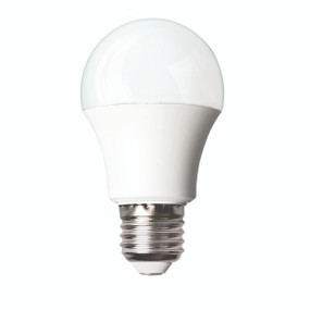 E27 LED Globe - 9W 860lm 6500K 110mm White