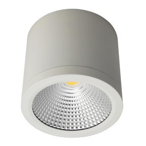 Surface Mounted Downlight - Dimmable 25W 2250lm IP54 IK08 4000K 120mm Satin White Commercial Grade