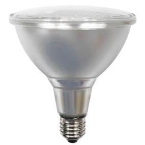 PAR 38 E27 LED Globe - 15W 1100lm IP54 3000K 133mm Silver