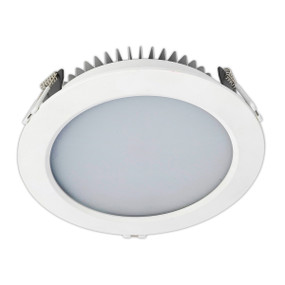Light: RAMSIS Large LED Downlight 1 - WARM WHITE (8.5 cm)