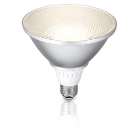 Light: LED PAR38 13W Reflector Globe - NA