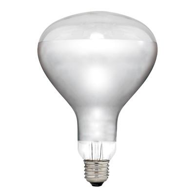 Light: INFRA-RED Heat Lamp Globe - NA