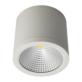 Cylindrical 240V 25W LED Ceiling Light - White Finish / White LED