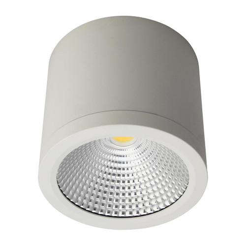 Cylindrical 240V 25W LED Ceiling Light - White Finish / Warm White LED