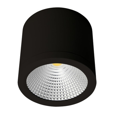 Cylindrical 240V 25W LED Ceiling Light - Black Finish / White LED
