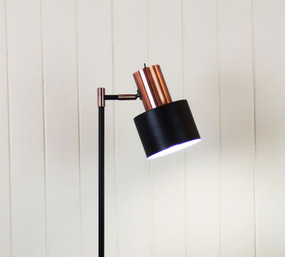 Floor Lamp - Graceful Black with Copper Head