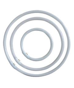 CFL G10Q T5 Circular 32W Triphosphor 3000K OD 246mm 2200lm Globe