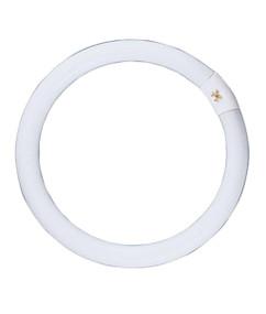 CFL G10Q T9 Circular 22W Triphosphor 5000K OD209mm 1250lm Globe