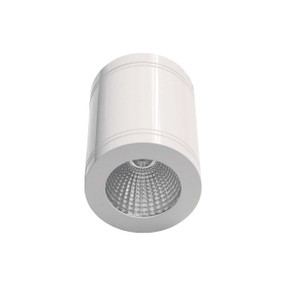 Surface Mounted Downlight - Dimmable IP65 5000K 900lm 105mm Gloss White