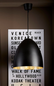 Black Silver Ceiling Lamp
