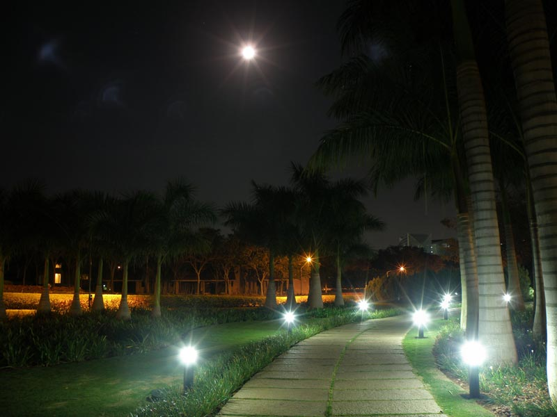 Night path to floating restaurant