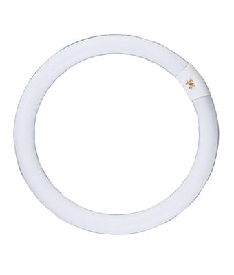 Fluorescent Circular Tubes