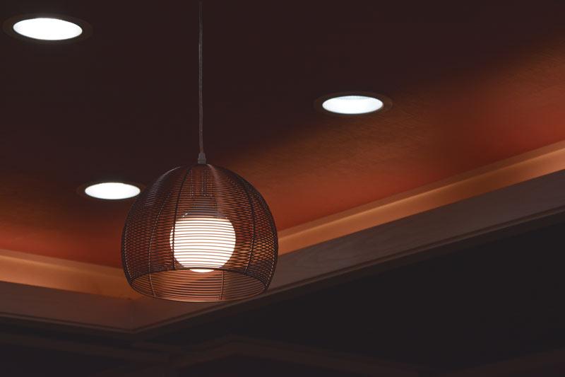 Ceiling Light Bulb