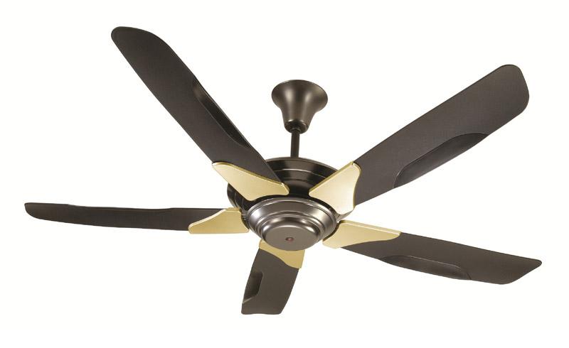 Black Beauty Ceiling Fan