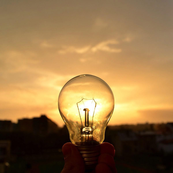 Bulb in natural light
