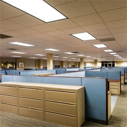 Wholesale lighting for commercial fitouts