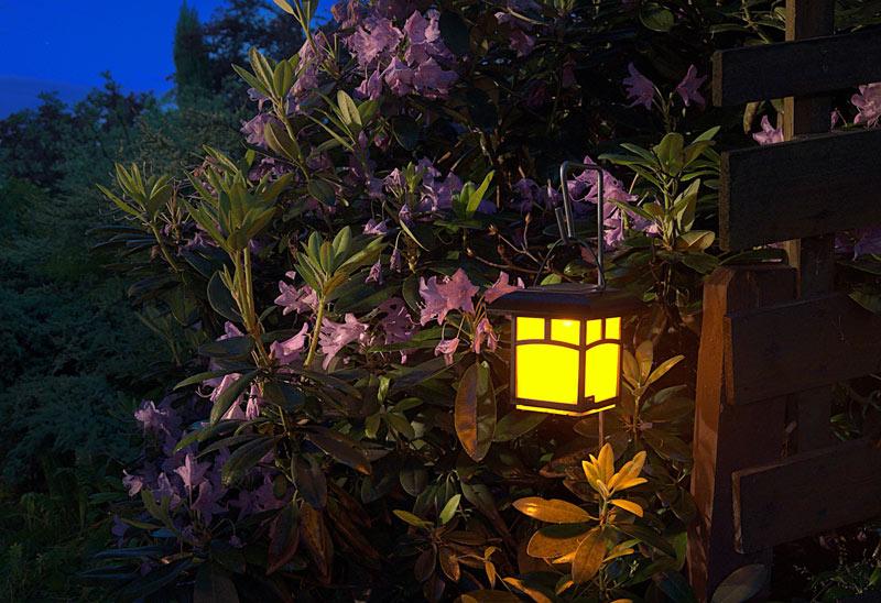 Garden at night Lantern light