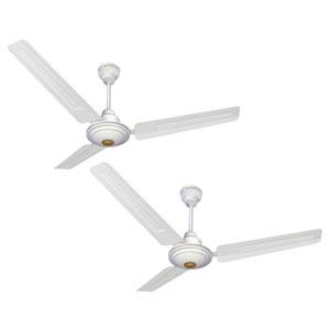 White Ceiling Fans