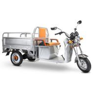 Electric Cargo Truck  Silver
