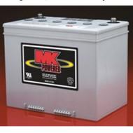 EV Rider - 2 Batteries - Breeze - 75 Ah Group 24 SLA