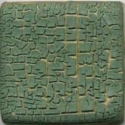 MBG063-D Cactus Crawl Dry