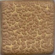 MBG064-D Chocolate Crawl Dry