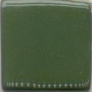 MBG004-D Cactus Green Dry