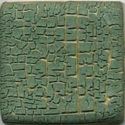 MBG063-P Cactus Crawl Pint