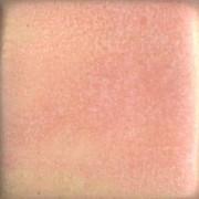 MBG057-P Rhubarb Pint