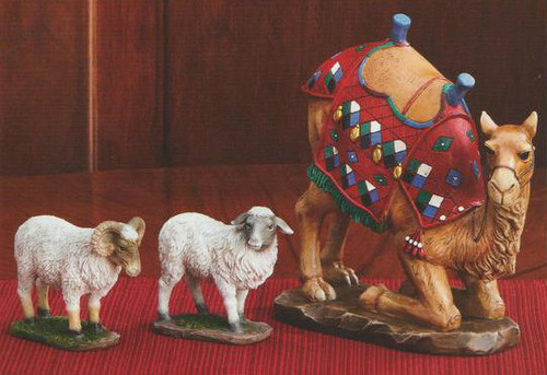 "New addition to the Real Life Nativity Set,Set of three animals to complement the 7"", 10"" Standard or 14"" Deluxe Three King's Nativity Sets~ RLN030/7"", RLN025/10"", and set RLN020/14"", this three-piece set includes a kneeling camel and two sheep. The sheep are modeled after the breed of sheep found in Bethlehem. Awassi sheep are notable for their shaggy cost, dark face, ruggedness and tolerance to extreme conditions. The set includes one ewe (female) and on ram (male) along with a brightly dressed camel kneeling in a reverent pose. Available in three sizes!"
