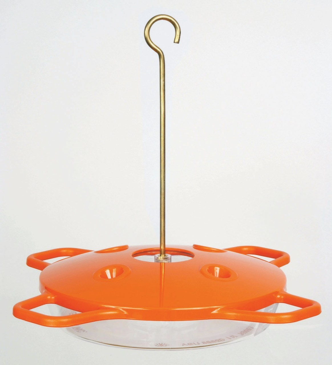 bird-feeder-basics-oriole.png