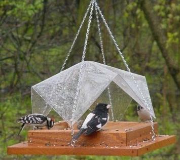 bird-feeder-basics-tray.png