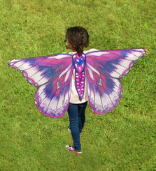 Fantasy Butterfly Wings
