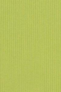 Sunbrella Spectrum Kiwi 48023-0000