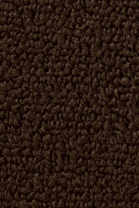 "100% Nylon ""Detroit"" Automotive Loop Carpet - Brown"