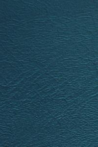 Denali Vinyl - 10 Teal Blue