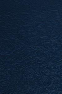 Denali Vinyl - 11 Navy Blue