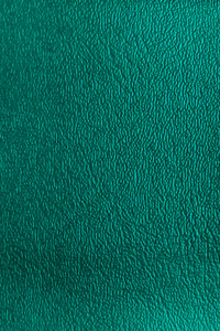 Denali Vinyl - 19 Green