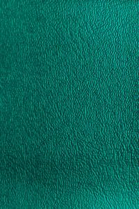 Denali Vinyl - 19 Green
