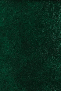 Denali Vinyl - 20 Dark Green