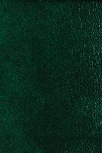 Denali Vinyl - 20 Dark Green